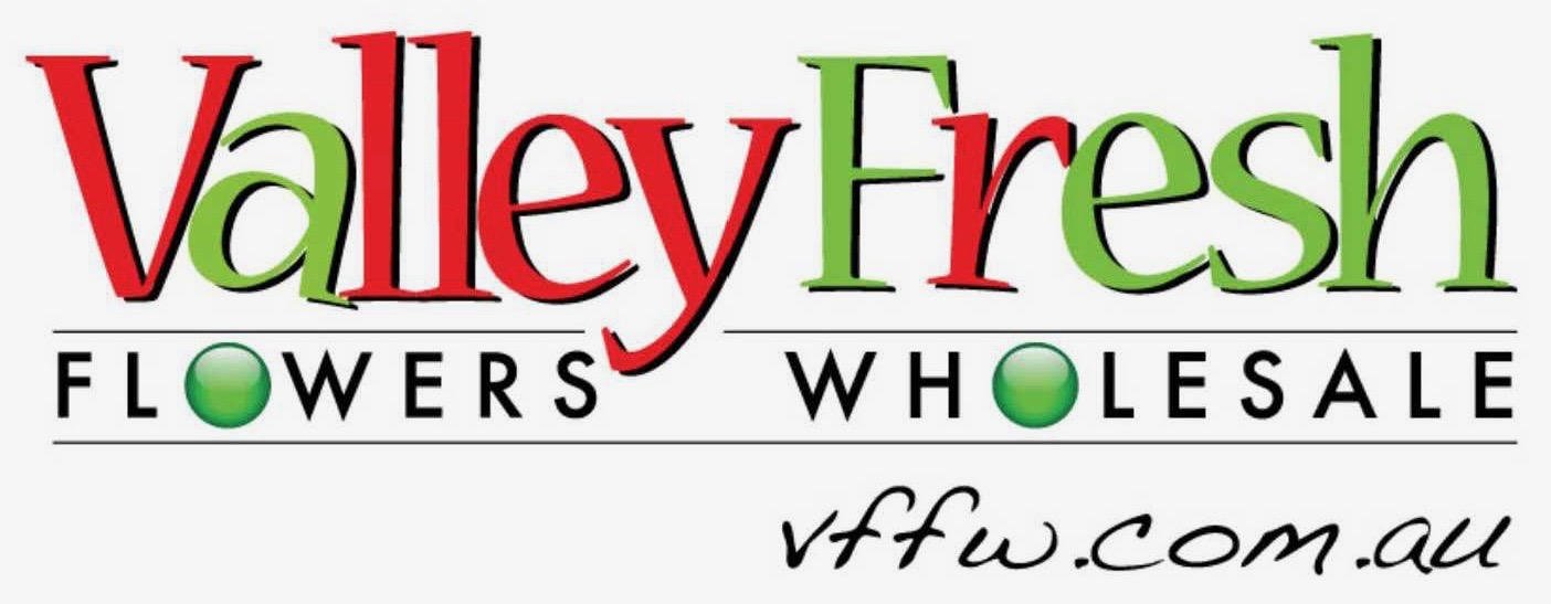 VFFW logo